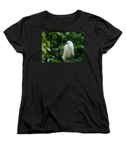 Snowy Egret In The Trees Women's T-Shirt (Standard Cut)