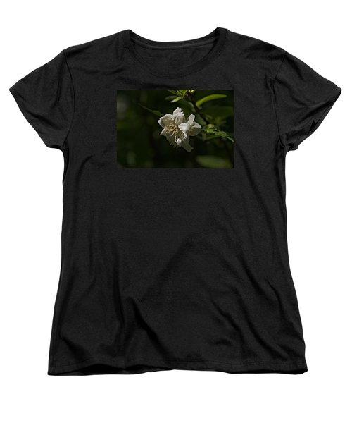Spring 2016 30 Women's T-Shirt (Standard Cut) by Cendrine Marrouat