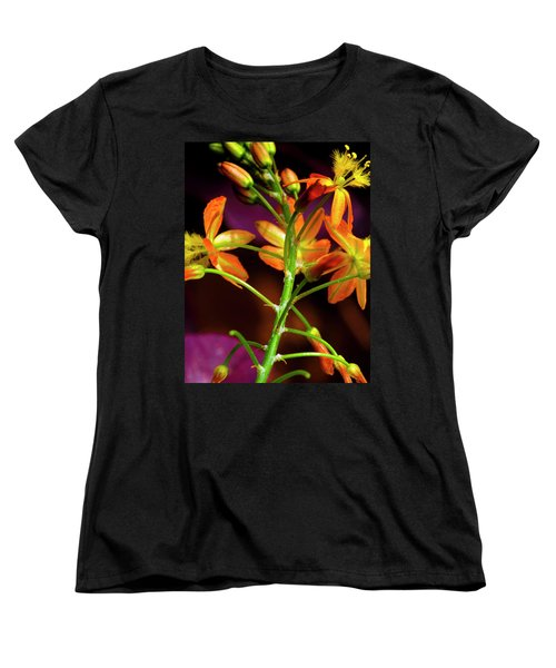 Spring Blossoms 3 Women's T-Shirt (Standard Cut) by Stephen Anderson