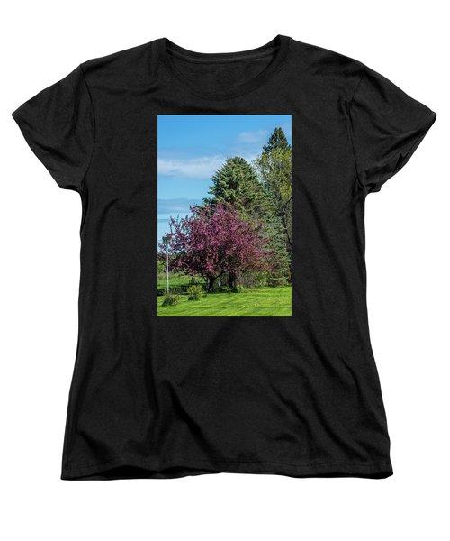 Women's T-Shirt (Standard Cut) featuring the photograph Spring Blossoms by Paul Freidlund