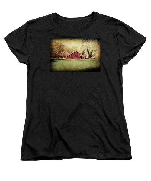 Spring In Nebraska Women's T-Shirt (Standard Cut) by Julie Hamilton