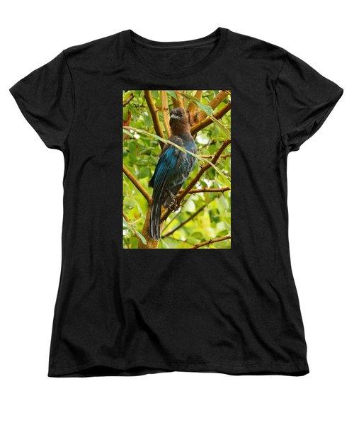 Stellar Model Women's T-Shirt (Standard Cut) by Steve Warnstaff