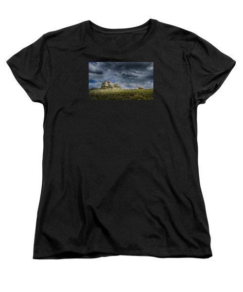 Stormy Peak 1 Women's T-Shirt (Standard Cut) by Mary Angelini