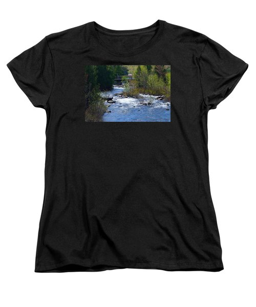 Stream In Spring Women's T-Shirt (Standard Cut) by David Porteus
