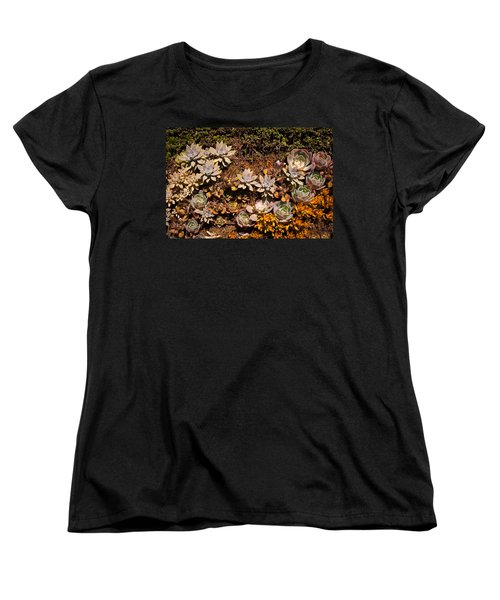 Women's T-Shirt (Standard Cut) featuring the photograph Succulents Vertical Garden by Catherine Lau