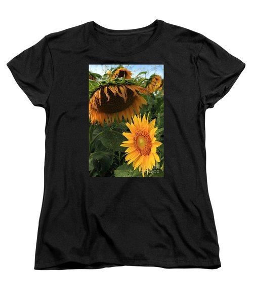 Sun Flowers  Past  And  Present  Women's T-Shirt (Standard Cut)