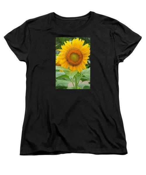Sunflower Women's T-Shirt (Standard Cut) by Ronald Olivier