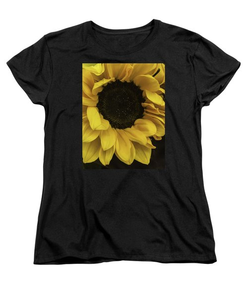 Sunflower Up Close Women's T-Shirt (Standard Cut) by Arlene Carmel