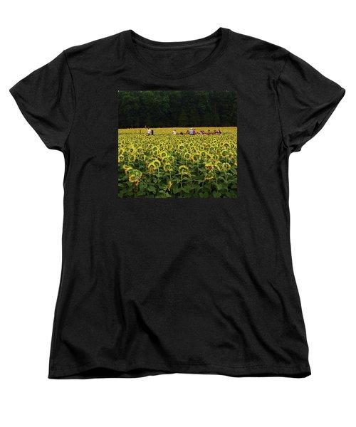 Sunflowers Everywhere Women's T-Shirt (Standard Cut) by John Scates