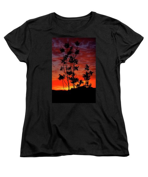 Sunrise Magic Women's T-Shirt (Standard Cut) by Paul Marto