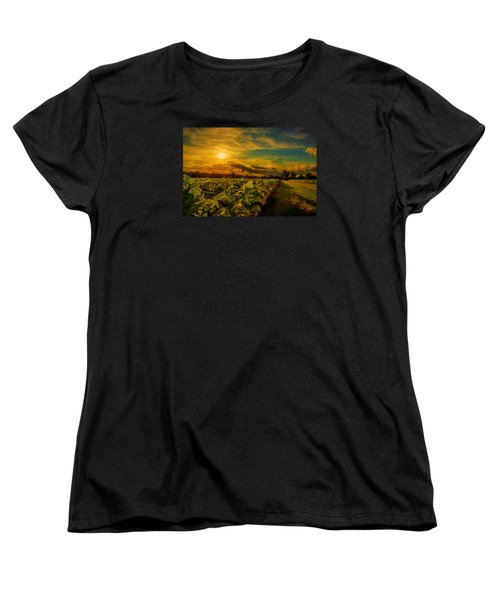 Sunset In A North Carolina Tobacco Field  Women's T-Shirt (Standard Cut) by John Harding