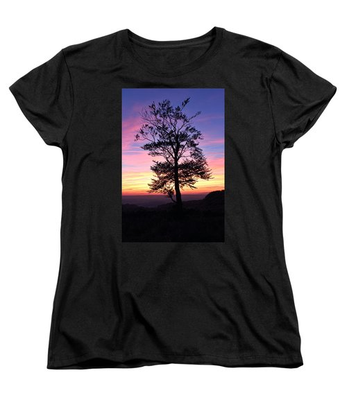 Sunset Tree Women's T-Shirt (Standard Cut) by RKAB Works