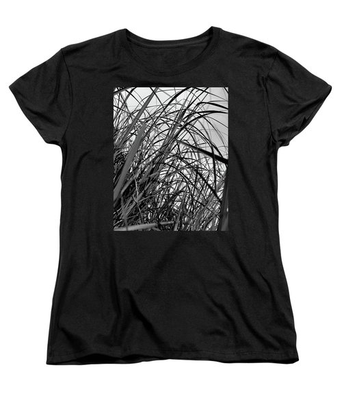 Women's T-Shirt (Standard Cut) featuring the photograph Tangled Grass by Susan Capuano