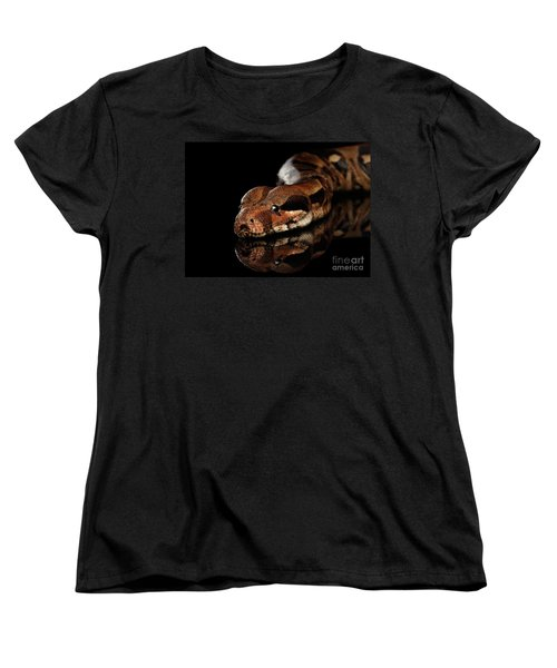 The Boa Constrictors, Isolated On Black Background Women's T-Shirt (Standard Cut) by Sergey Taran