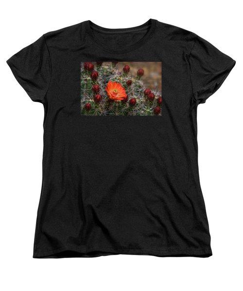 Women's T-Shirt (Standard Cut) featuring the photograph The First Bloom  by Saija Lehtonen