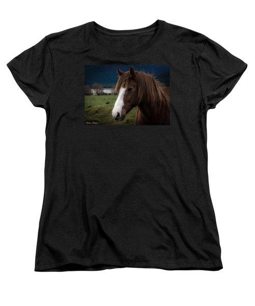 The Horse Women's T-Shirt (Standard Cut) by Andrew Matwijec