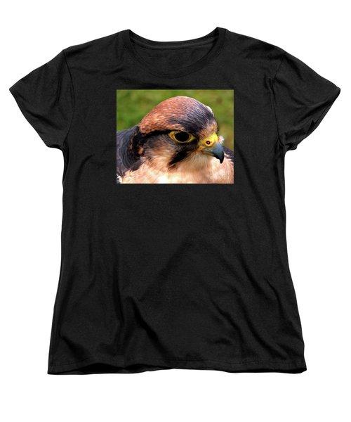 The Peregrine Women's T-Shirt (Standard Cut) by Stephen Melia