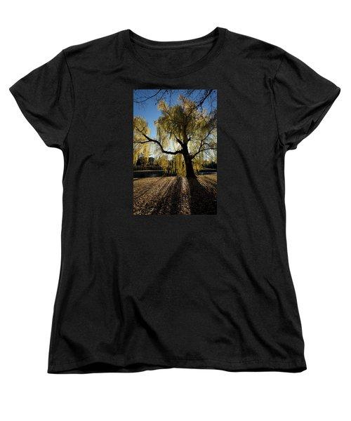 The Sun Goes Through Women's T-Shirt (Standard Cut) by Celso Bressan