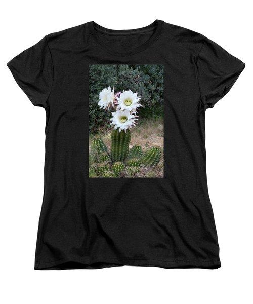 Three Blossoms Women's T-Shirt (Standard Cut) by Monte Stevens