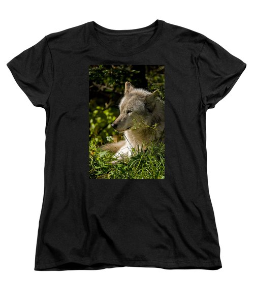 Women's T-Shirt (Standard Cut) featuring the photograph Timber Wolf Portrait by Michael Cummings