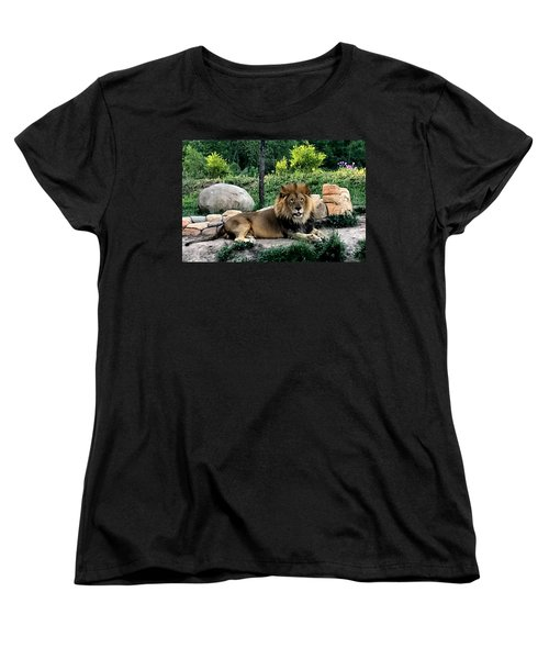 Tomo, The King Of Beasts Women's T-Shirt (Standard Cut) by Laurel Talabere