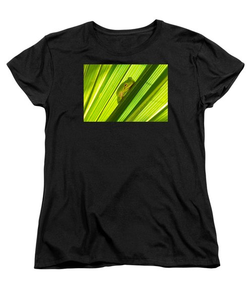 Tree Frog And Palm Frond Women's T-Shirt (Standard Cut) by Kenneth Albin