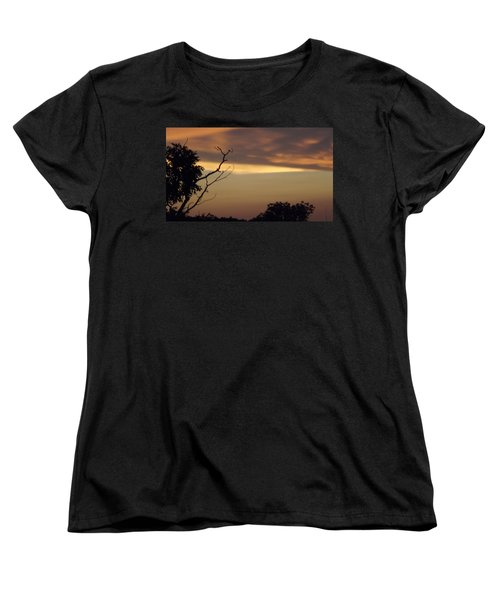 Trees Of The Lake Women's T-Shirt (Standard Cut) by Don Koester
