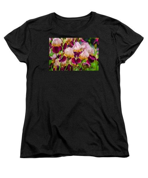 Tricolored Irisses Women's T-Shirt (Standard Cut) by Rainer Kersten