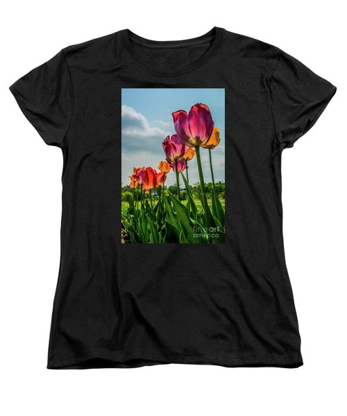 Tulips In The Spring Women's T-Shirt (Standard Cut) by Jane Axman