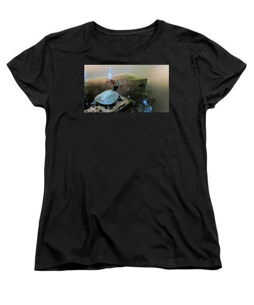 Turtle On Rock Women's T-Shirt (Standard Cut) by Mark Barclay