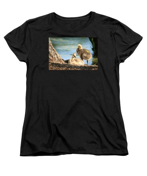 Two Little Goslings Women's T-Shirt (Standard Cut) by Joni Eskridge