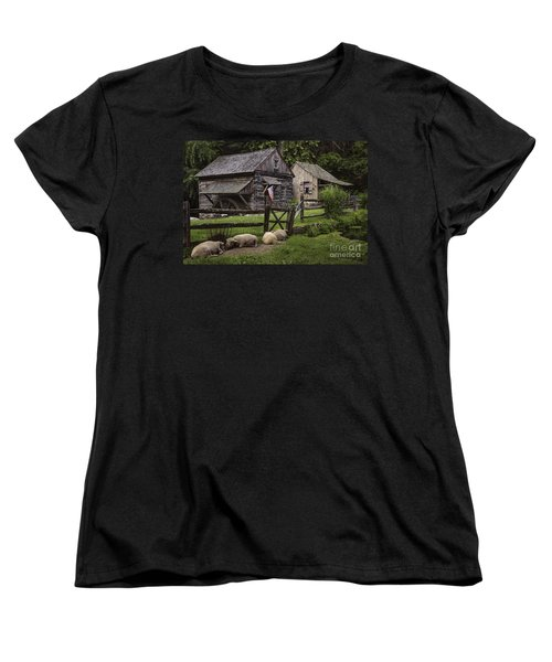 Untitled Cuttalossa Iv Women's T-Shirt (Standard Cut) by Debra Fedchin