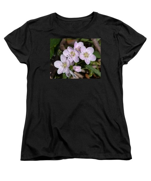 Virginia Or Narrowleaf Spring-beauty Dspf041 Women's T-Shirt (Standard Cut) by Gerry Gantt