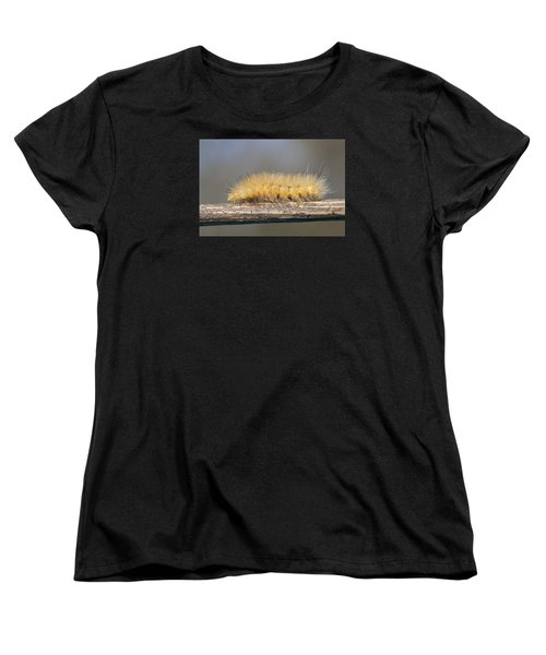 Women's T-Shirt (Standard Cut) featuring the photograph Virginian Tiger Moth by David Lester