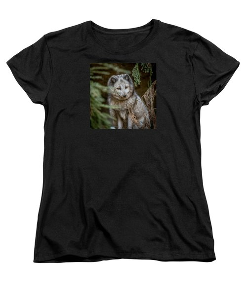 Women's T-Shirt (Standard Cut) featuring the photograph Waiting For Red by Wade Brooks