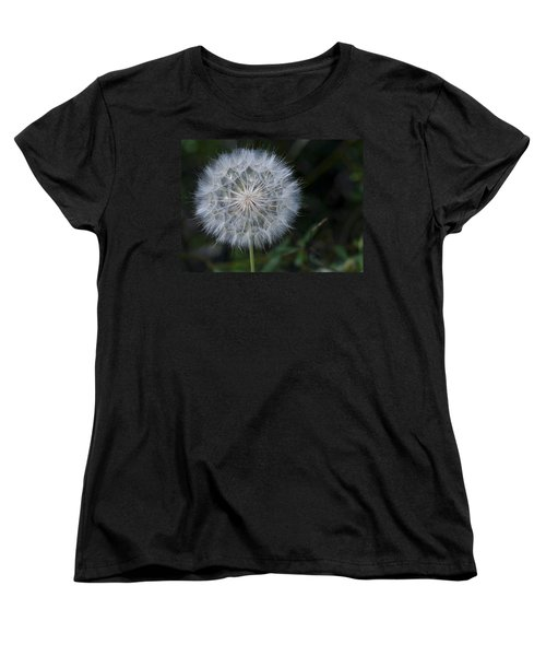 Women's T-Shirt (Standard Cut) featuring the photograph Waiting For The Breeze by Randy Bayne
