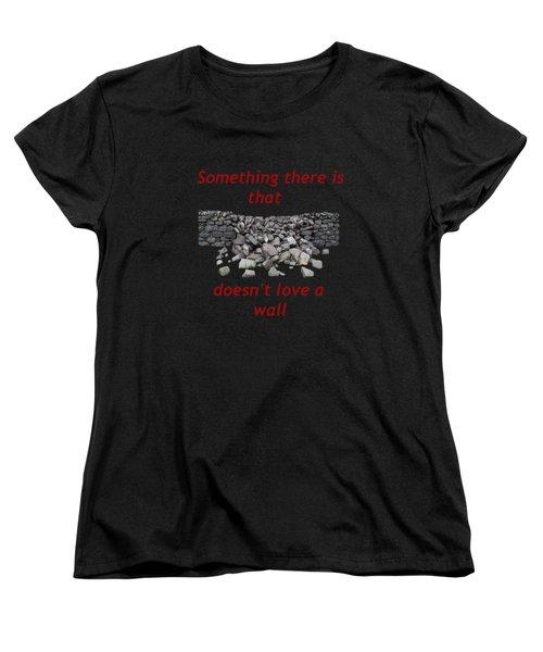 Wall Transparent Women's T-Shirt (Standard Cut)
