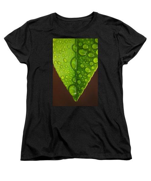 Water Droplets On Lemon Leaf Women's T-Shirt (Standard Cut) by Ralph A  Ledergerber-Photography