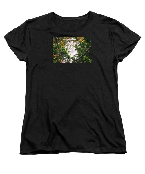 Women's T-Shirt (Standard Cut) featuring the photograph Waterfall Calling My Name by Janie Johnson