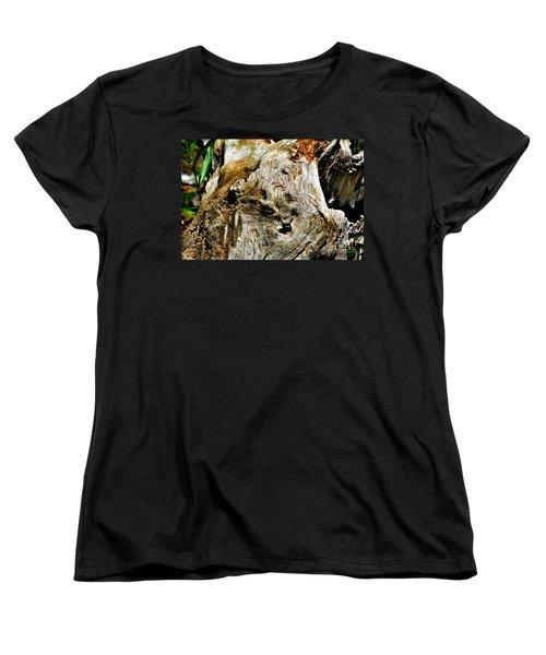Weathered Wood Women's T-Shirt (Standard Cut) by Debbie Portwood