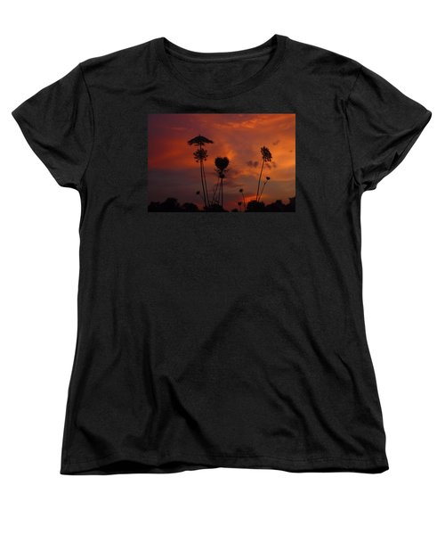 Weeds In The Sunrise Women's T-Shirt (Standard Cut) by Kathryn Meyer