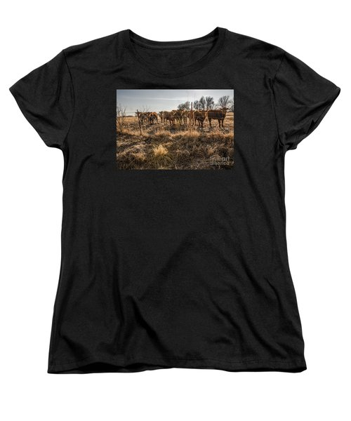 Welcoming Committee Women's T-Shirt (Standard Cut) by Sue Smith