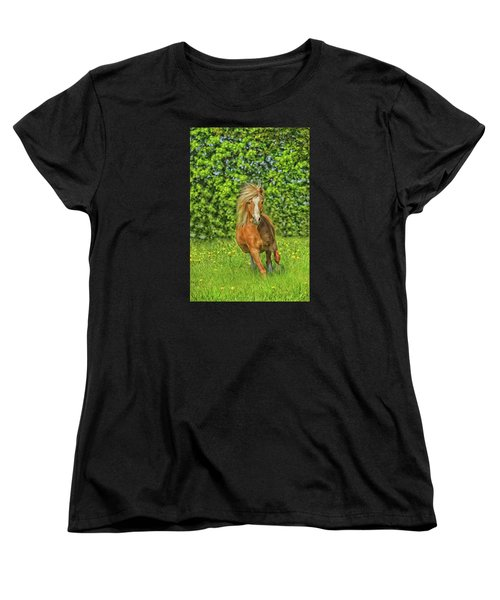 Welsh Pony Women's T-Shirt (Standard Fit)