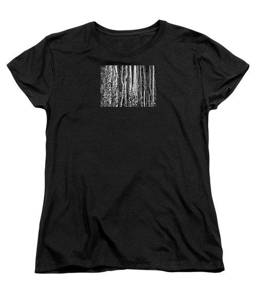 Where Women's T-Shirt (Standard Cut) by David Gilbert