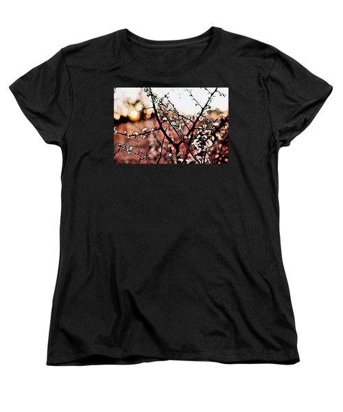 White Blossom Branches Women's T-Shirt (Standard Cut) by Carol Crisafi