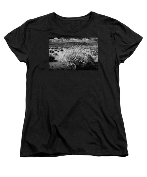 Women's T-Shirt (Standard Cut) featuring the photograph Wild Desert Flowers Blooming In Black And White In The Anza-borrego Desert State Park by Randall Nyhof
