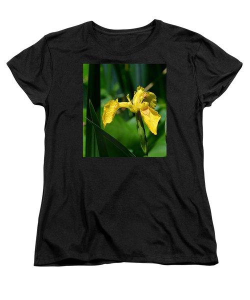 Wild Yellow Iris Women's T-Shirt (Standard Cut) by Kathy Eickenberg