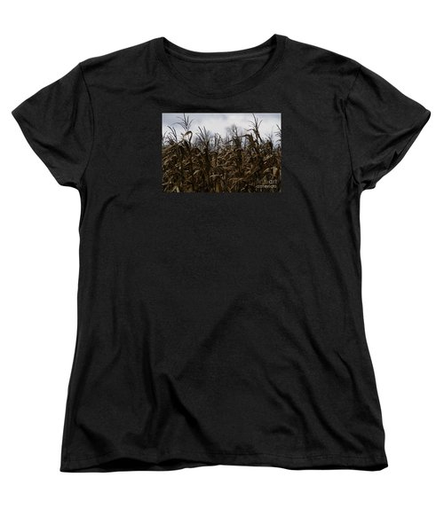 Wind Blown Women's T-Shirt (Standard Cut) by Linda Shafer