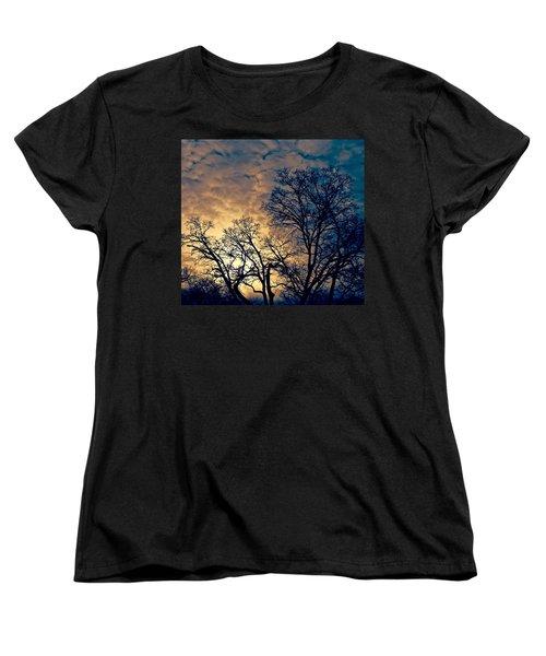 Winter's Afternoon Women's T-Shirt (Standard Cut) by Rita Mueller