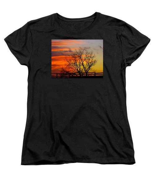 Winter's Scene Women's T-Shirt (Standard Cut) by Donald C Morgan
